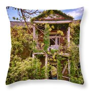 Old Entry Way Throw Pillow