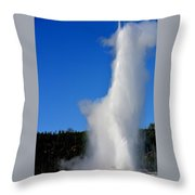 Old Faithful Throw Pillow by Carrie Putz