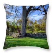Old Family Plot In Cromwell Valley Park Throw Pillow