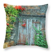 Old Farm Door Throw Pillow