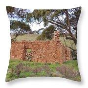 Old Farm House Ruin  Throw Pillow