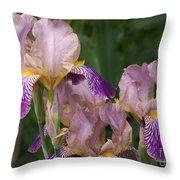 Old-fashioned Iris Throw Pillow