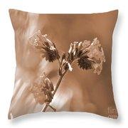 Old Fashioned Wild Flowers  Throw Pillow