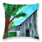 Old Florida Barn Throw Pillow