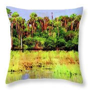 Old Florida Loop Palms Throw Pillow