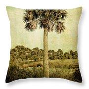 Old Florida Palm Throw Pillow