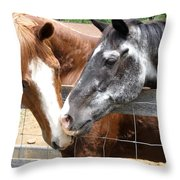 Old Friends Are The Best Friends Throw Pillow