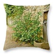 Old Garden Tap Throw Pillow