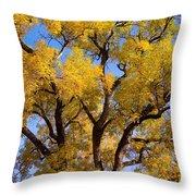 Old Giant  Autumn Cottonwood Throw Pillow