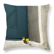 Old Greek Door Throw Pillow