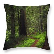 Old Growth Cedars Throw Pillow