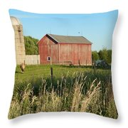 Old Horse Farm Throw Pillow
