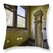 Old House 6 Throw Pillow by Roger Snyder