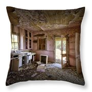 Old House 8 Throw Pillow by Roger Snyder