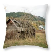 Old House New House Throw Pillow