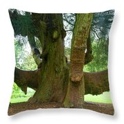 Old Huge Tree Throw Pillow