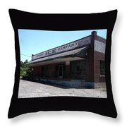 Old Ice House In Malvern Throw Pillow