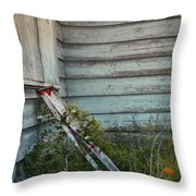 Old Ladder Throw Pillow