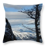 Old Larch Tree Has Best View Throw Pillow