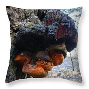 Old Man In A Tree Throw Pillow