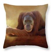 Old Man Orangutan Throw Pillow