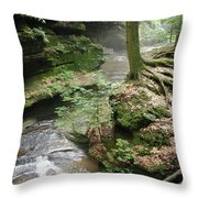 Old Man's Cave  Throw Pillow