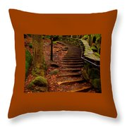 Old Man's Stairs Throw Pillow