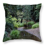 Old Mill Park In Mill Valley 2 Throw Pillow