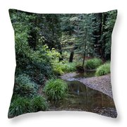 Old Mill Park In Mill Valley Throw Pillow