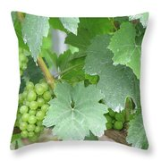 Old Mission Jewels Throw Pillow