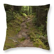 Old Mitchell Trail In Spruce-fir Forest Throw Pillow