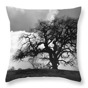 Old Oak Against Cloudy Sky Throw Pillow