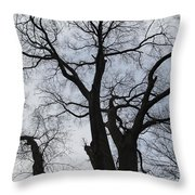 Old Oak Overcast Throw Pillow