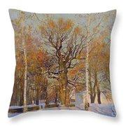Old Oak-tree In Kolomenskoye Throw Pillow