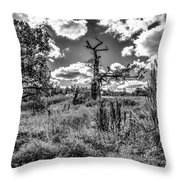 Old Oaks Bw.  Throw Pillow