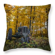 Old Oliver Throw Pillow