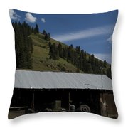 Old Out Building Throw Pillow