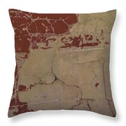 Old Painted Brick Throw Pillow