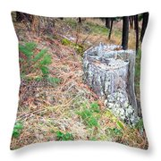 Old Pine Stump Throw Pillow