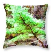 Old Pine Tree 1 Throw Pillow