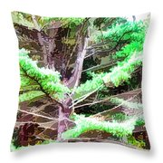 Old Pine Tree Throw Pillow
