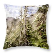 Old Pines Cascades Wc Throw Pillow