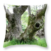 Old Planes Throw Pillow