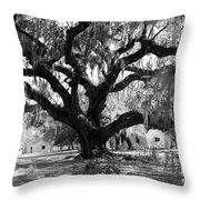 Old Plantation Tree Throw Pillow