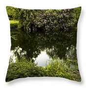 Old Pond Throw Pillow