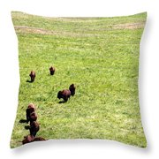 Old Prairie Kings Throw Pillow