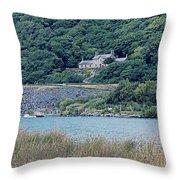 Old Quarry Hospital Throw Pillow