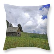 Old Ranchers Summer Cabin Redone Throw Pillow