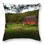 Old Red Barn 2 Throw Pillow
