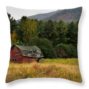 Old Red Barn In The Adirondacks Throw Pillow by Nancy De Flon